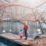 Activities for Children in Tirana