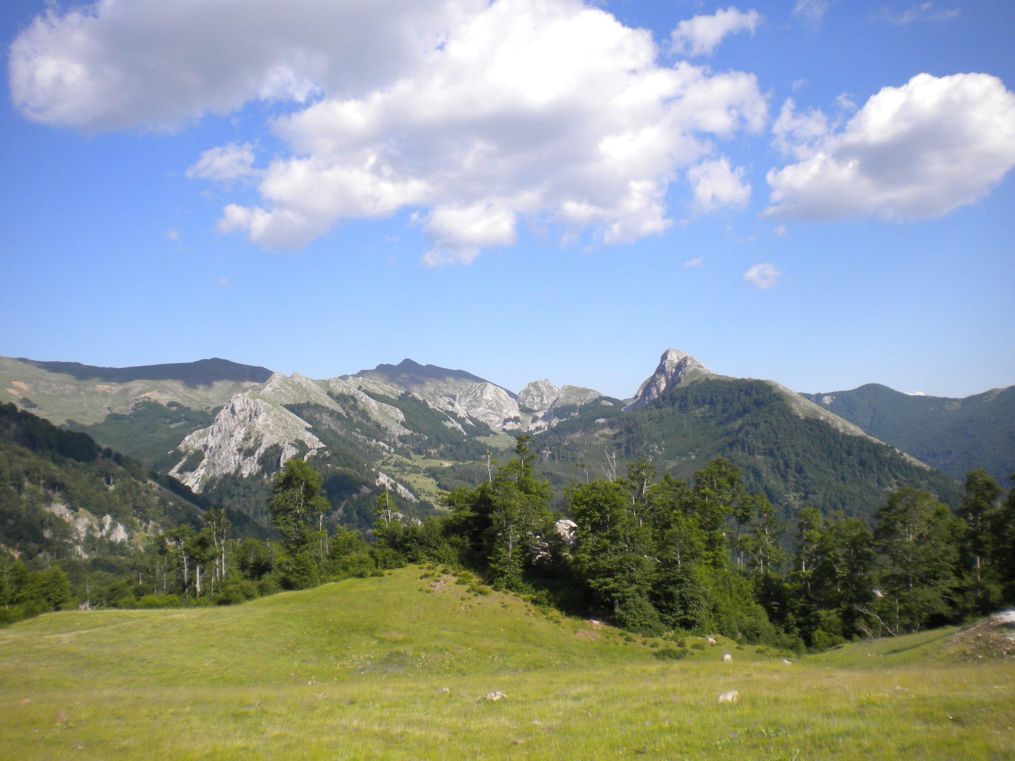 Shebenik Jabllanice National park