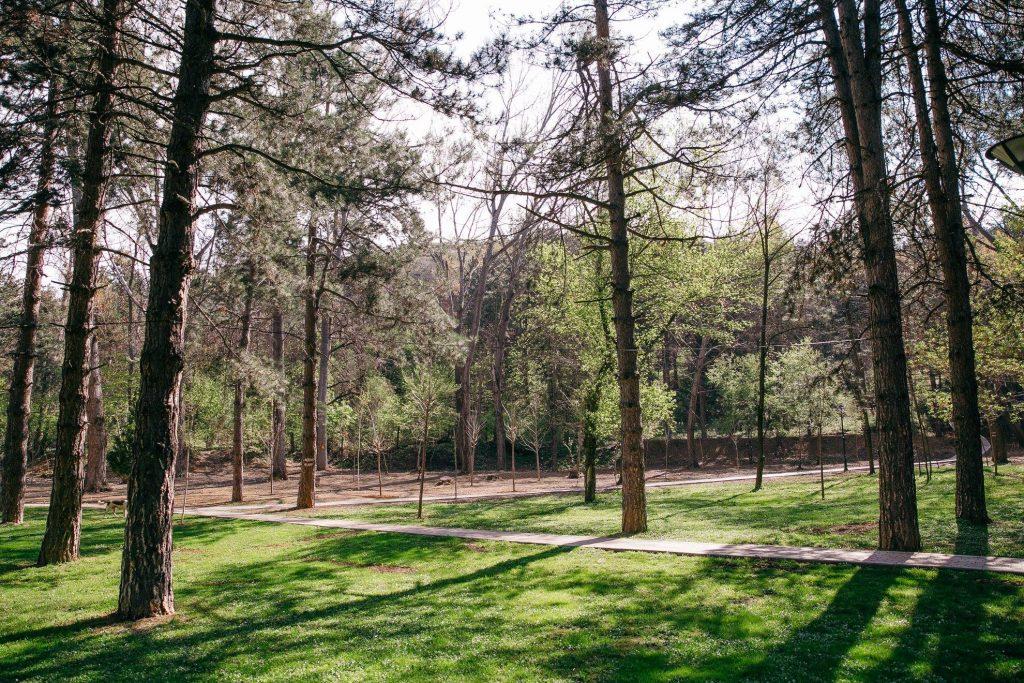 Parku Rinia Korce